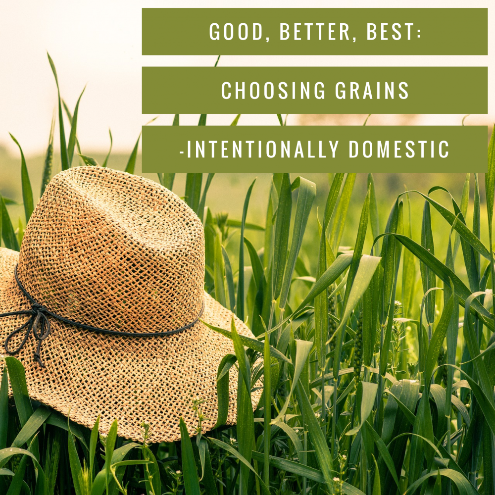 Good, Better, Best- Choosing Grains