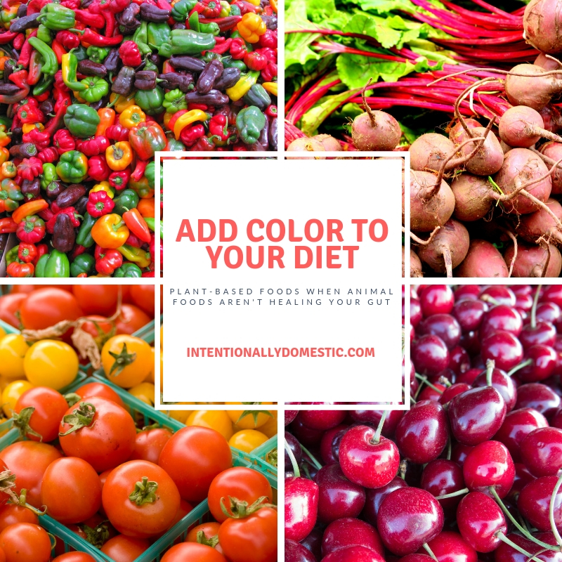 Add Color to Your Diet:  Plant-Based Foods When Animal Foods Aren't Healing Your Gut