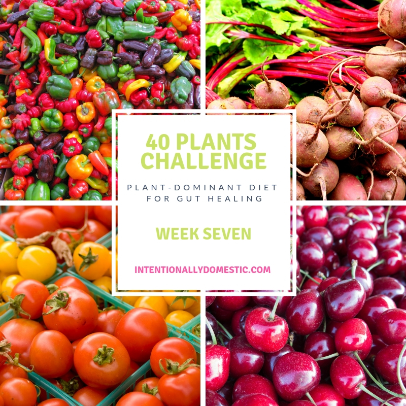 Forty Plants Challenge: Week Seven